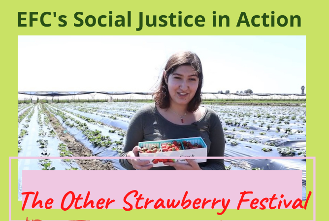 The Other Strawberry Festival: Stories of People, Land and Resistance