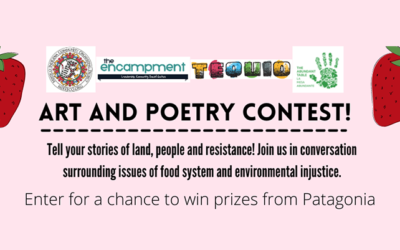 The Other Strawberry Festival: Stories of People, Land and Resistance Contest